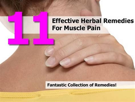 herbal remedies for muscle soreness picture 1