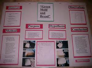 science fair projects yeast picture 10