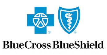 bluecross blueshield of fl health option plans picture 9