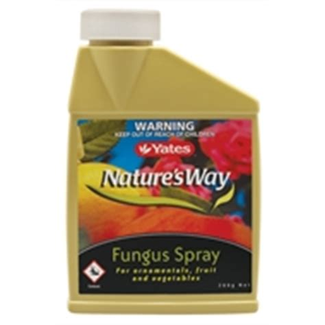 cup fungus spray picture 1