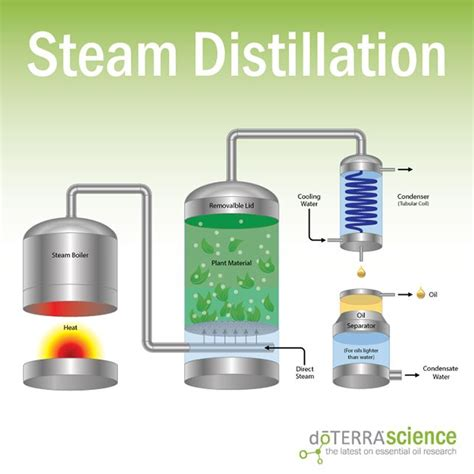 steam distillation essential oil extractor parts picture 9