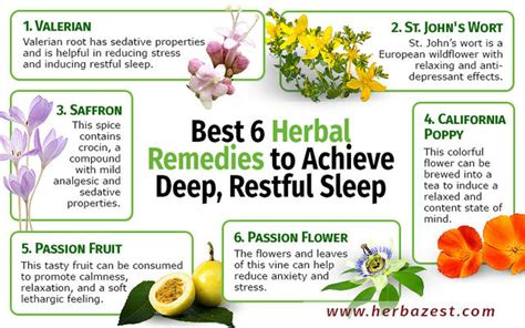 herbal sleep remedies picture 1