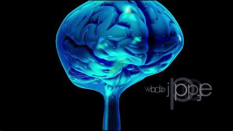 herpes simplex virus in the brain picture 2