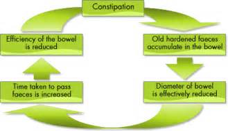 colon helper can the body be dependent on them picture 2