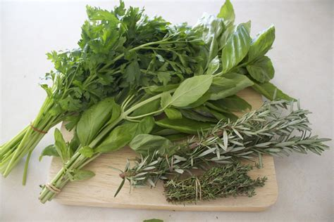 libido herbs picture 3