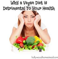 vegan diet picture 11