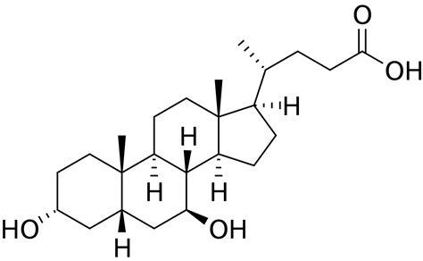 ursodeoxycholic acid picture 1