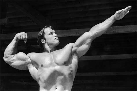 arnolds muscle pictures picture 14