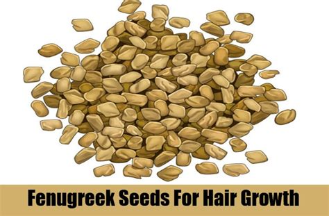 fenugreek hair growth picture 3