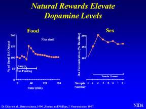 herbal release dopamine picture 1