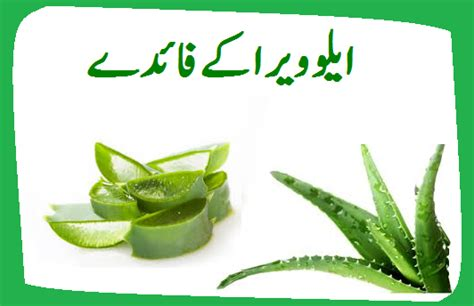 acne say bachnay k faide in urdu picture 7