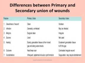 open skin wound picture 6