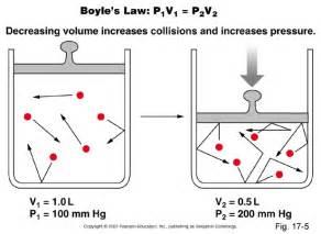 boils law picture 10
