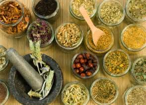 homemade herbal remedy coccidia picture 7
