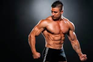 fast twitch and slow muscle fibers picture 13