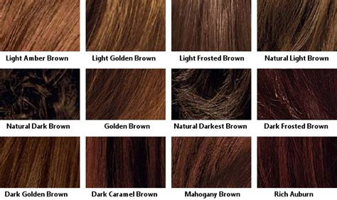 shades of brown hair color picture 1