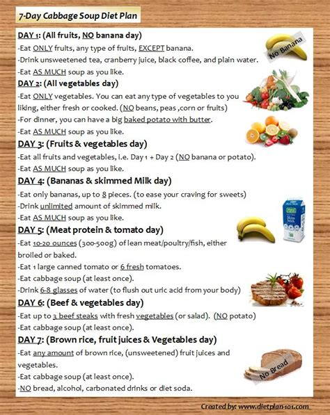 cabbage soup diet recipe picture 13
