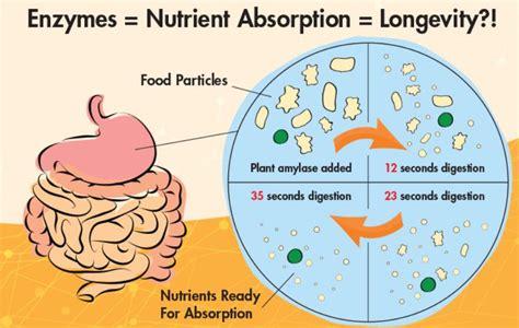 digestion symptoms picture 3