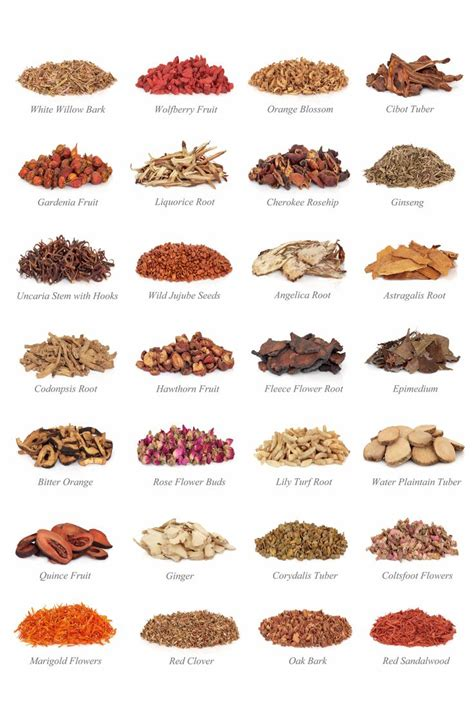 where can you buy herbal medicines picture 6