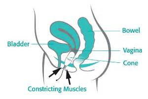 how to strengthen your bladder muscles picture 1