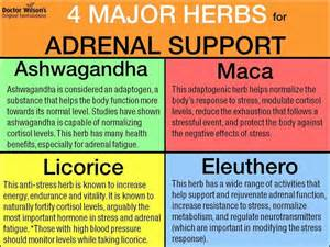 herbs for adrenal fatigue licorice picture 3