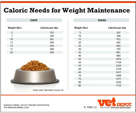 calorie intake and weight loss picture 15