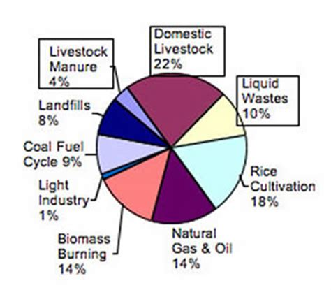 dictionary anaerobic digestion picture 3