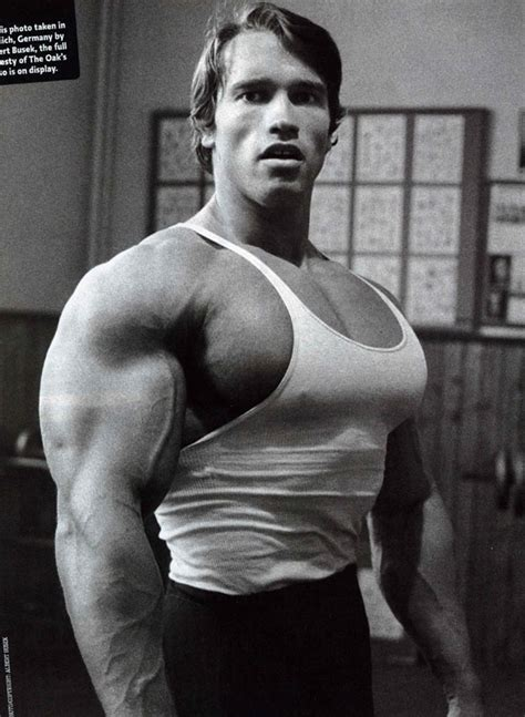 arnolds muscle pictures picture 1