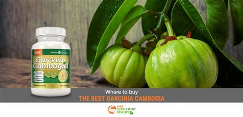 where to buy primalite garcinia cambogis picture 7