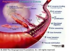 colon cancer chemotherapy picture 10