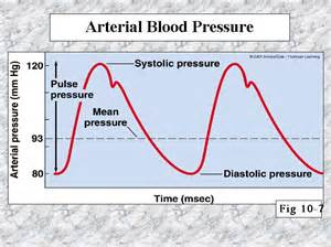 Arterial blood pressure picture 3
