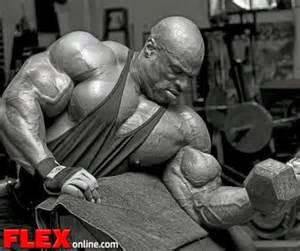 bodybuilder looking for sponsor 2014 picture 6