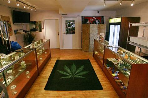 weed smoke shop picture 10