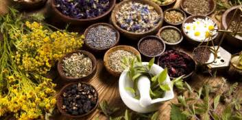 herbal remedies for spanish speaking cultures picture 10