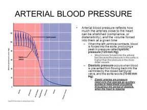 Arterial blood pressure picture 7