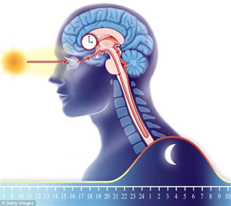 when brain tumor causes insomnia picture 17