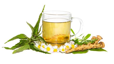 herbal supplement articles picture 10