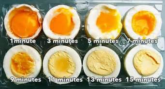 all egg diet picture 2