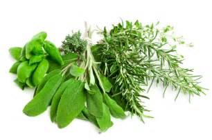 herbal hebal picture 2