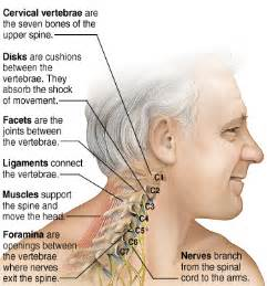 muscle pain neck pain and joint pain picture 3