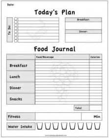 diet journal picture 11