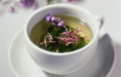 far east ginsing and herbal teas picture 10