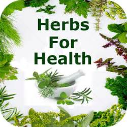 health herbal picture 15