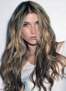 brown hair with blonde highlights picture 7