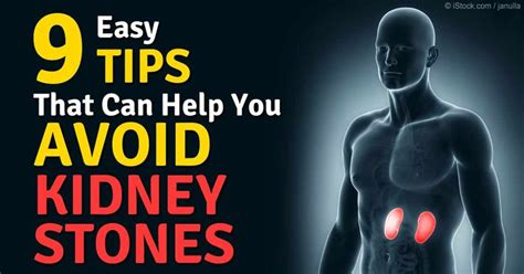 fat burners and kidney stones picture 7