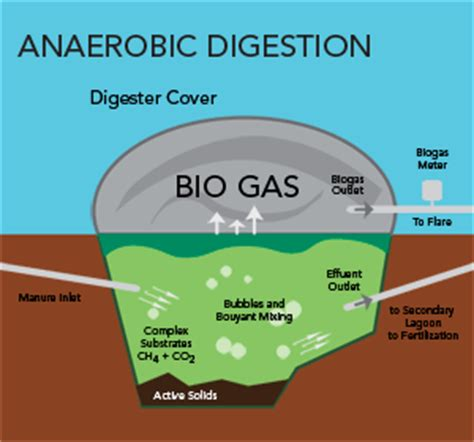 anaerobic digestion modelling software picture 14