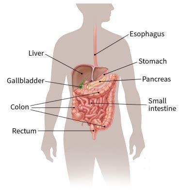 colon cancer out come picture 2