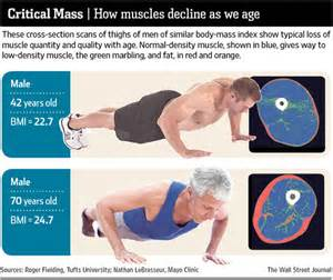 aging muscle lose picture 17