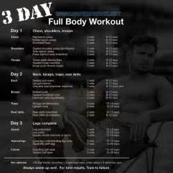 full body muscle building workouts picture 6