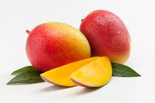 mango diet picture 15